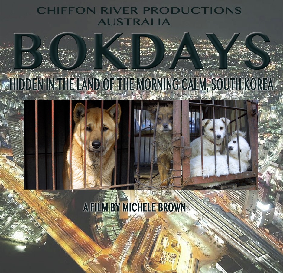 Bokdays Film Exposed – A Cautionary Tale