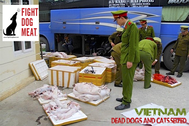Vietnam: One Ton Of Dead Dogs and Cats Seized
