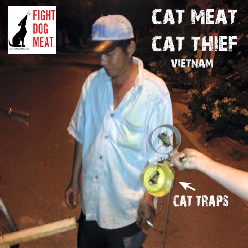 Vietnam: Cat Meat Thief Caught Red Handed