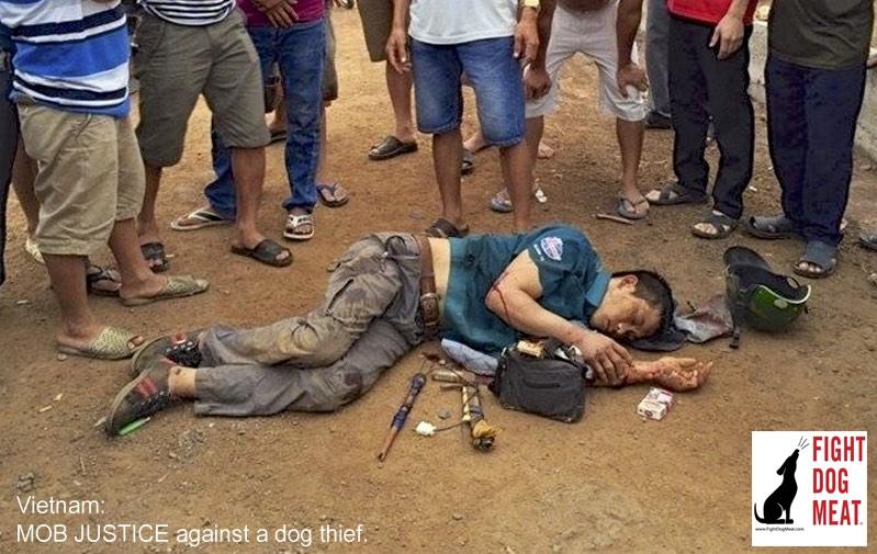 Vietnam Dog Thief Beaten Almost To Death Fight Dog Meat