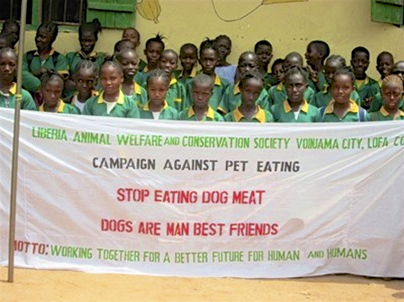 Liberia: Animal Lovers Help Educate Against The Dog Meat Trade