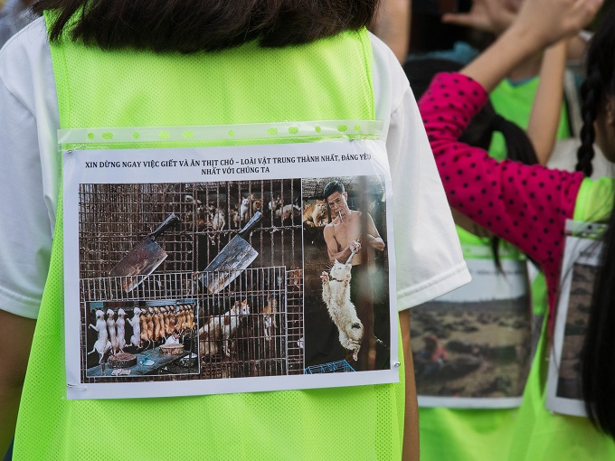 Vietnam: Children Demonstrate To Stop Dog Meat