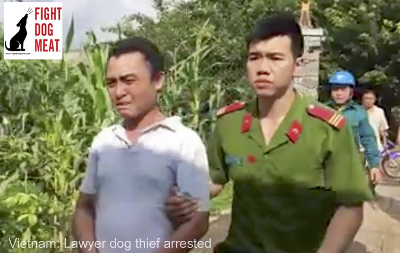Vietnam – Video: Law Student Arrested As A Dog Thief