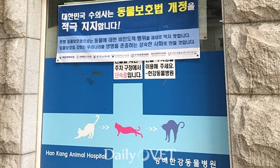 South Korea: Veterinarians Support Amendment To The Animal Protection Act