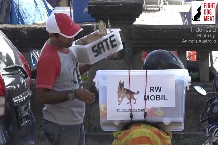 www.FightDogMeat.com, pet centric, Fight Dog Meat
