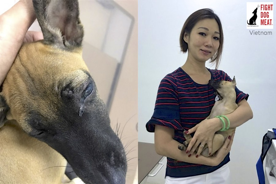 Vietnam: Rescued After Brutally Beaten Into A Coma