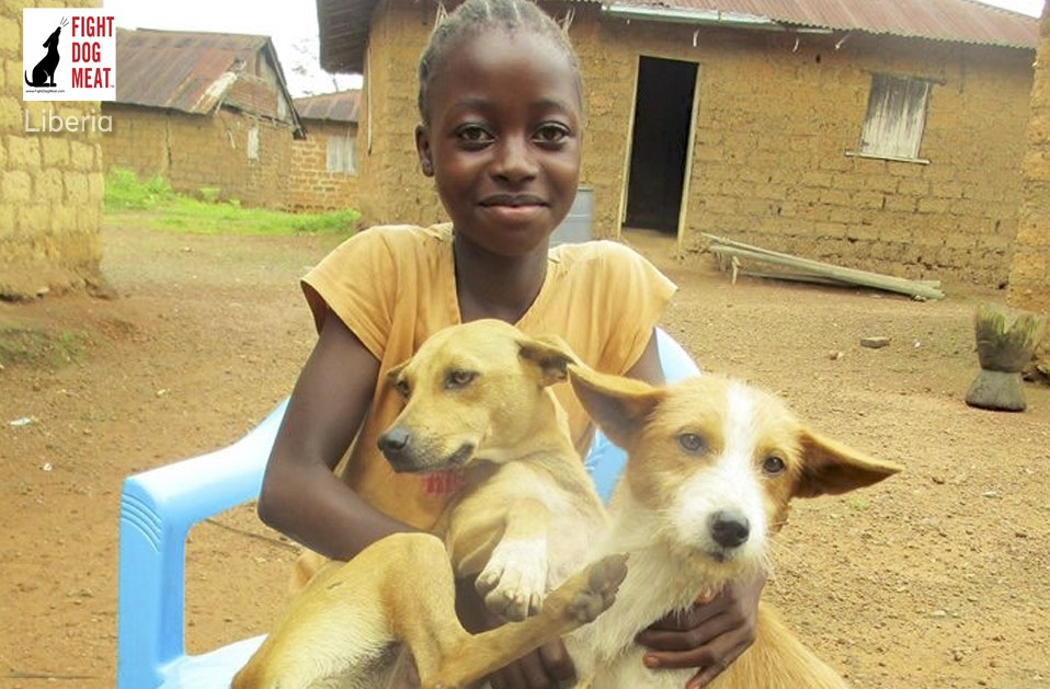 Liberia: Young Girl Refuses To Let Her Dogs Be Sold For Dog Meat