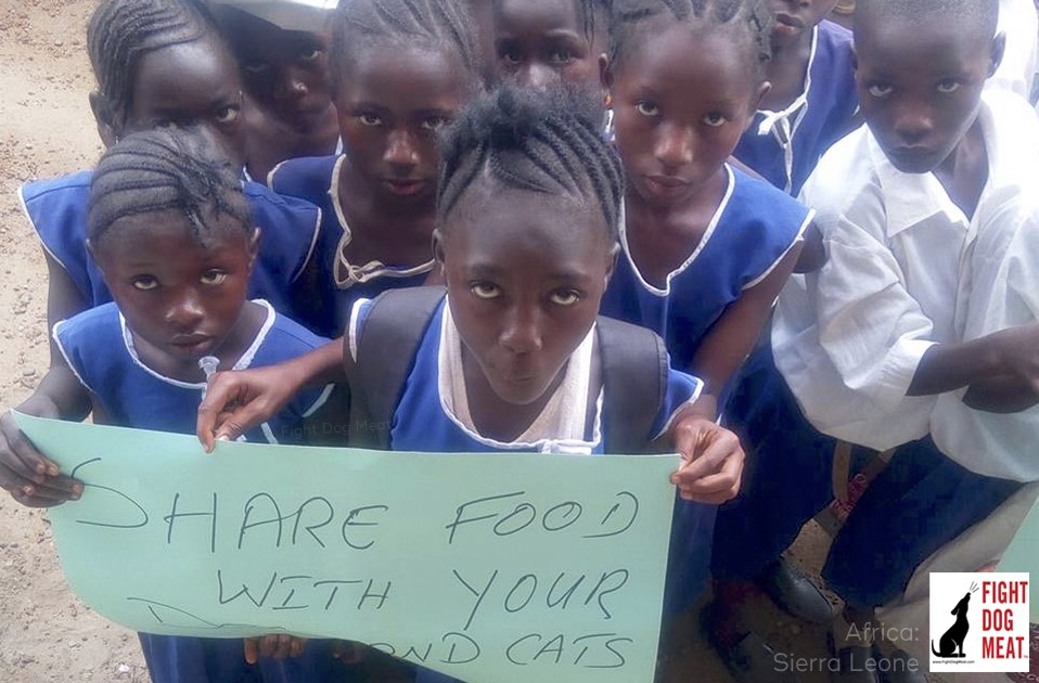 Sierra Leone: Children Plead To Stop Eating Dogs And Cats