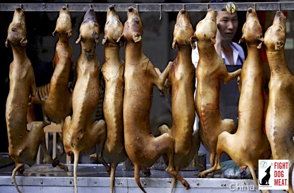 China: The First Time He Ate Dog Meat