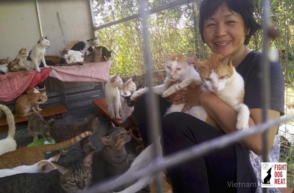 Vietnam: Vietnam's Cat Rescuer Quyen