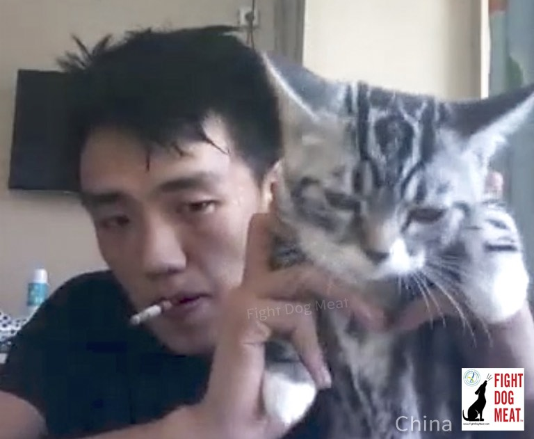 China: Boastful Cat Abuser