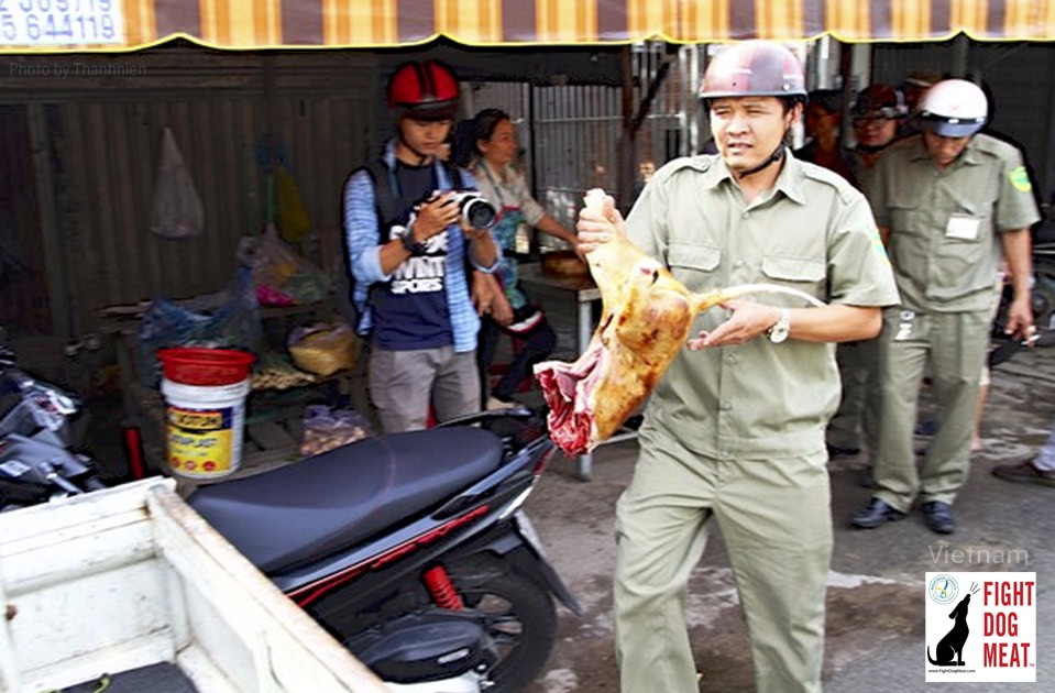 Vietnam: Dog Eaters Hit Back