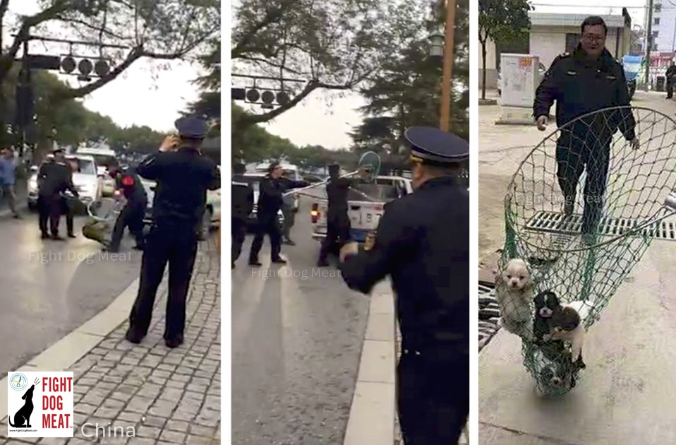 China: Hangzhou's Rebuttal To Justify