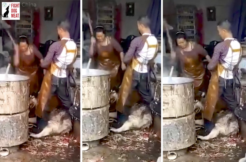 China: Laughing Woman Dog Butcher