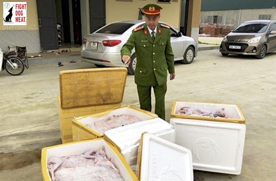 Vietnam: Cat Meat Haul Seized From Public Bus