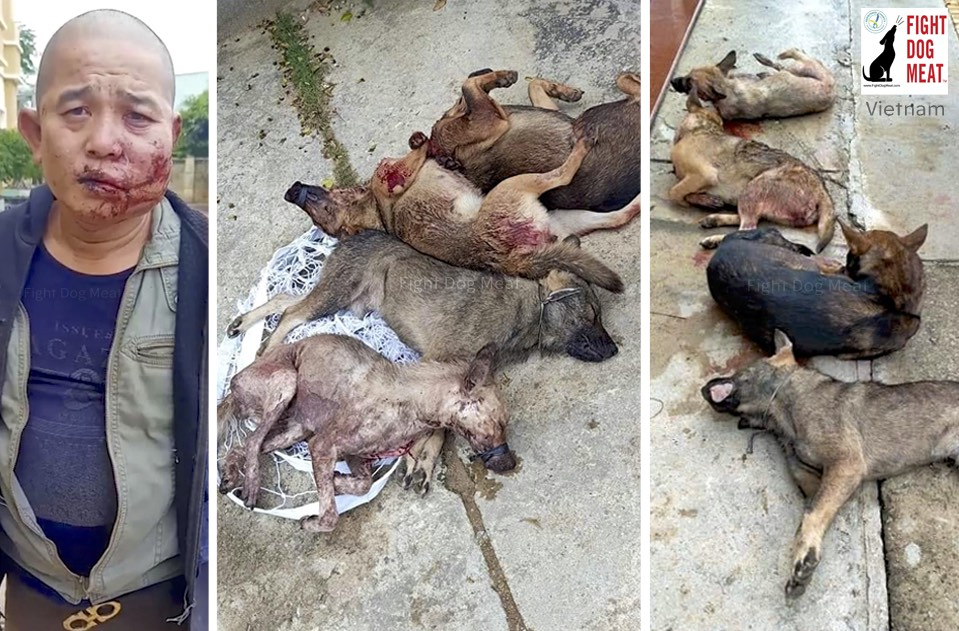 Vietnam: Brutally Cruel Dog Thief Caught