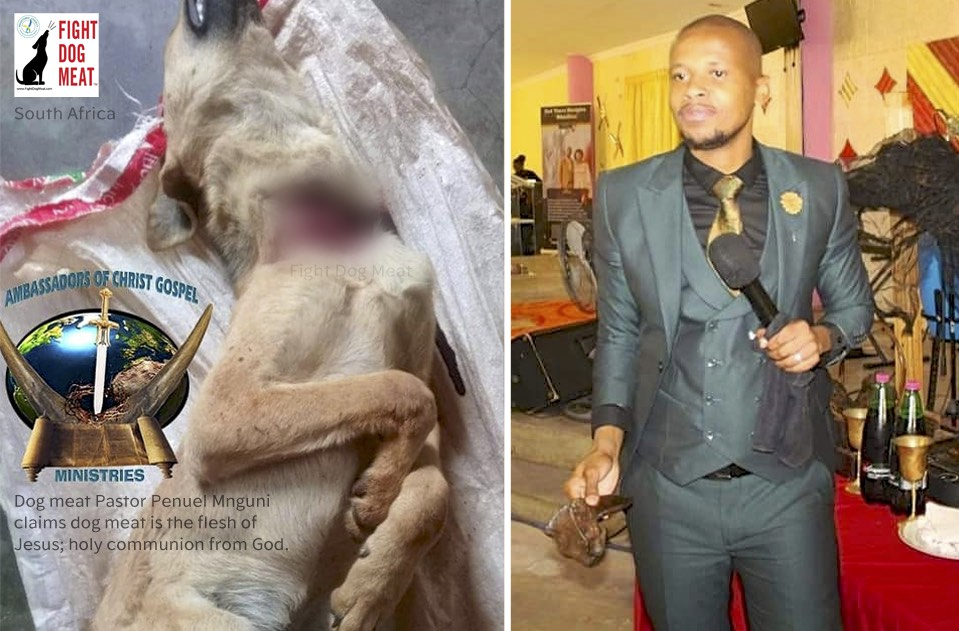 South Africa: Pastor Claims Dog Meat is From God.
